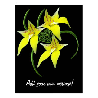 Cowslip Orchid Love Celtic Knotwork Heart Postcard