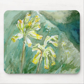 Cowslips Primula veris on a grassy bank Mousemat Mouse Pad