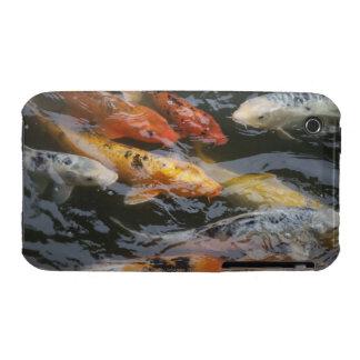 Coy Fish Case-Mate iPhone 3 Case