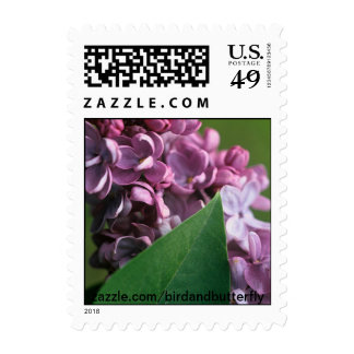 Coy Lilac postage