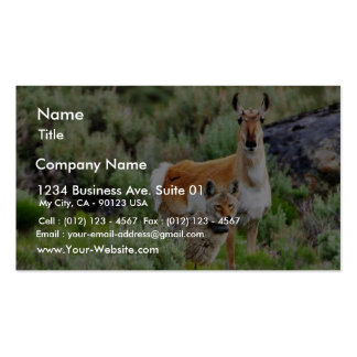 Coyote And Antelope In Yellowstone Park Business Card