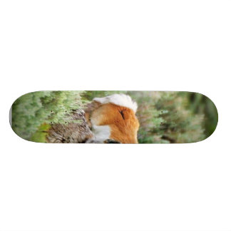 Coyote And Antelope In Yellowstone Park Skate Deck