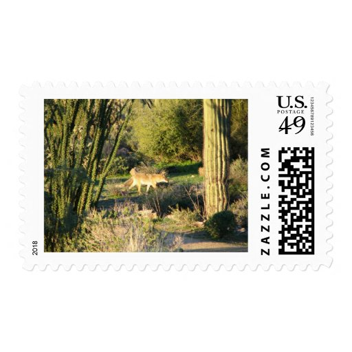 Coyote_at_dawn stamp postage stamps
