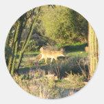 Coyote_at_dawn Sticker Round Stickers