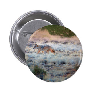 Coyote at dusk 2 inch round button