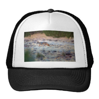 Coyote at dusk trucker hat