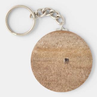 Coyote Basic Round Button Keychain