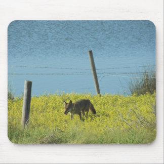 Coyote Bayou by Leslie Peppers Mouse Pad
