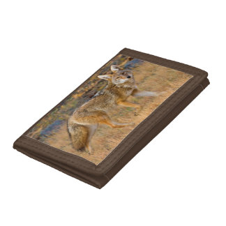 Coyote (Canis Latrans) Hunting Tri-fold Wallets
