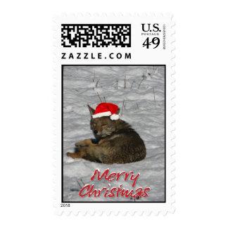 coyote christmas postage stamps