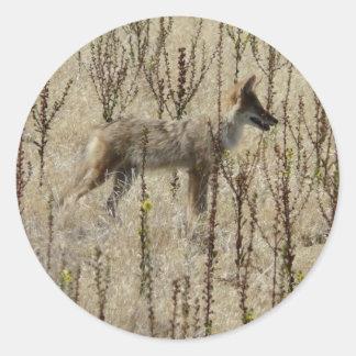 Coyote Classic Round Sticker