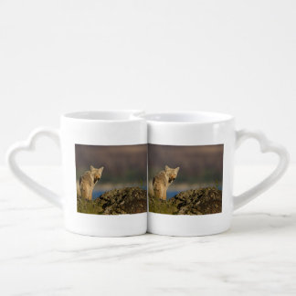 coyote coffee mug set