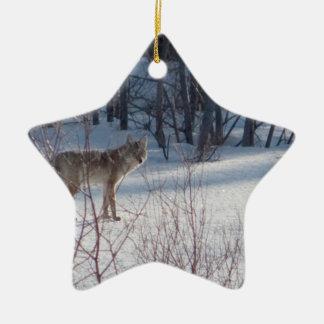 Coyote de la primavera ornaments para arbol de navidad