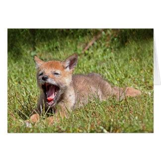 Coyote del bebé que bosteza tarjeta de felicitación