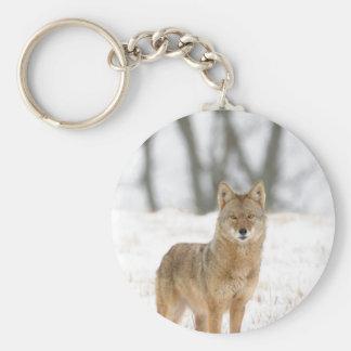 Coyote del macho alfa llavero redondo tipo pin