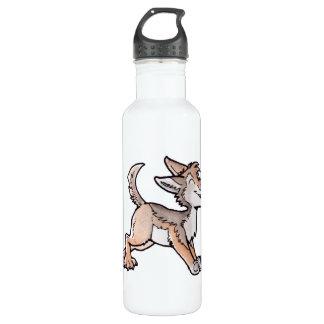 Coyote del oro del tonto