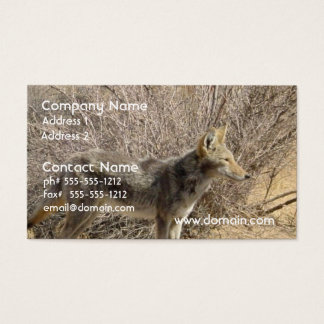 Coyote Design Business Card