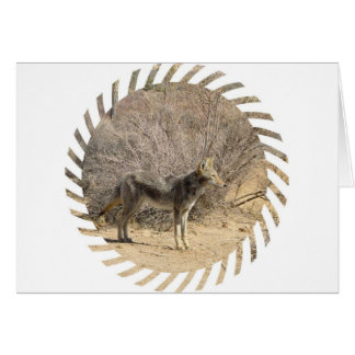 Coyote Design Greeting Card