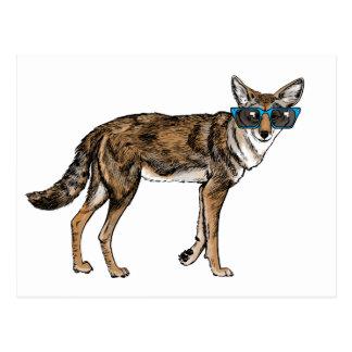 Coyote divertido del inconformista con las gafas tarjetas postales