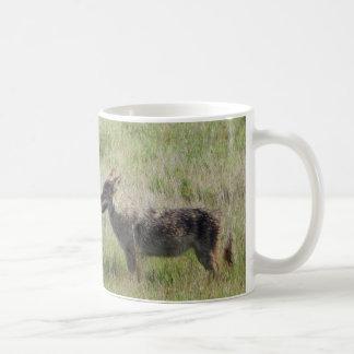 Coyote Encounter Coffee Mug