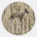 Coyote Etiquetas Redondas