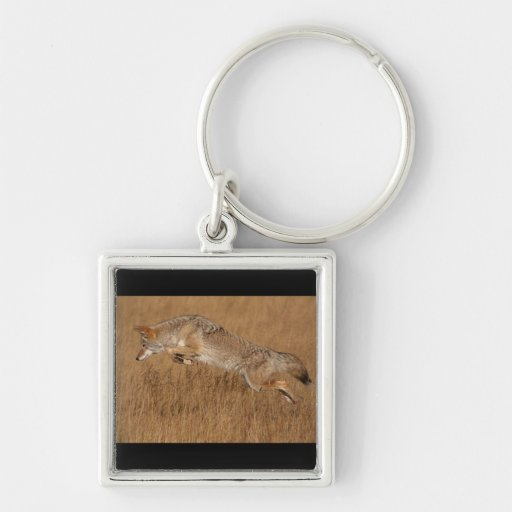 Coyote Flying Keychains