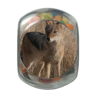 Coyote Glass Jars