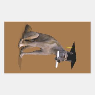Coyote graduado pegatina rectangular