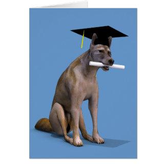 Coyote graduado tarjeta de felicitación