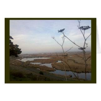 Coyote Hills Card