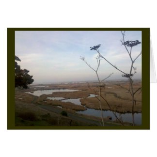 Coyote Hills Stationery Note Card
