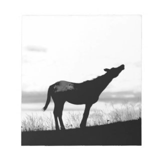Coyote Horse Notepad