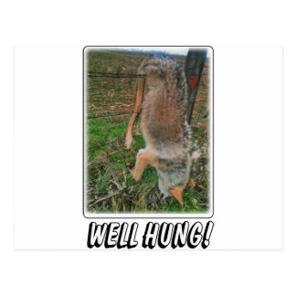 COYOTE HUNT - WELL HUNG OVER FENCE POSTCARD