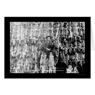Coyote Hunter Amid Over 60 Pelts 1913 Greeting Card