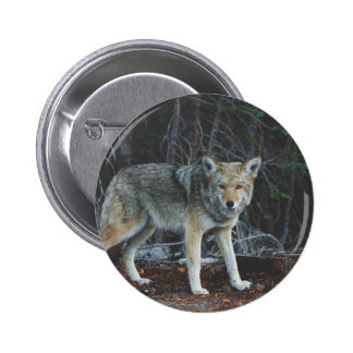 Coyote Hunting 2 Inch Round Button