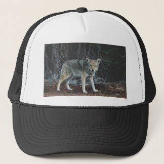 Coyote Hunting Trucker Hat