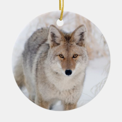 Coyote in Snow at Yellowstone National Park Ornament
