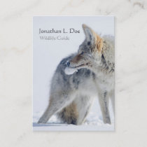 Coyote in Snow Wildlife Guide, Ecologist Business Card