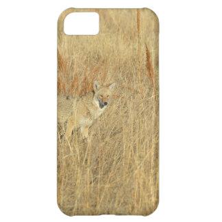Coyote iPhone 5C Case