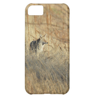 Coyote iPhone 5C Cover