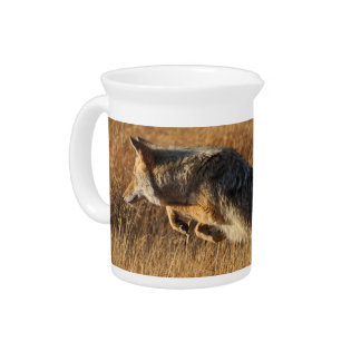 coyote jumping drink pitcher