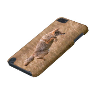 Coyote Leaping - Gibbon Meadows iPod Touch 5G Cases