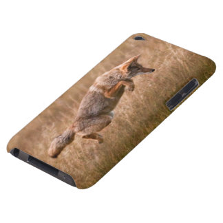 Coyote Leaping - Gibbon Meadows iPod Touch Case