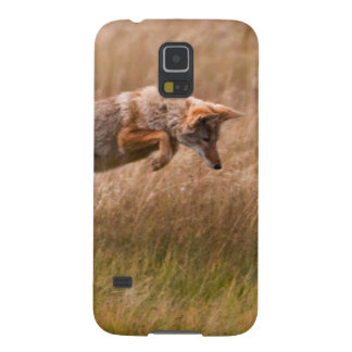 Coyote Leaping - Gibbon Meadows Case For Galaxy S5