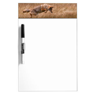 Coyote Leaping - Gibbon Meadows Dry-Erase Boards