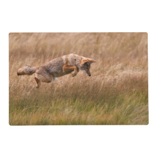 Coyote Leaping - Gibbon Meadows Placemat