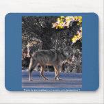 Coyote Mousepad-Blue
