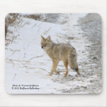 Coyote, Mousepads