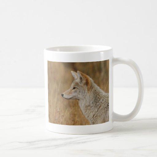 coyote mugs