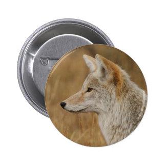 coyote pin redondo de 2 pulgadas